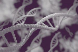 dna, cells, genetic