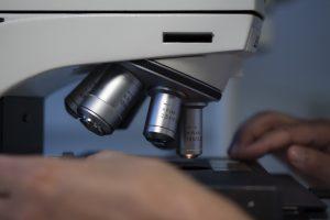 microscope, hands, medical